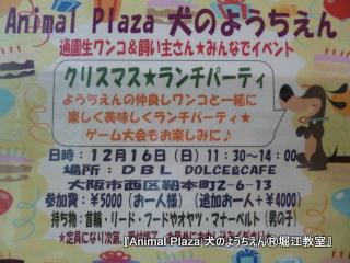 20121106堀江 (27).JPG