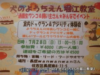 201379堀江 (2).JPG